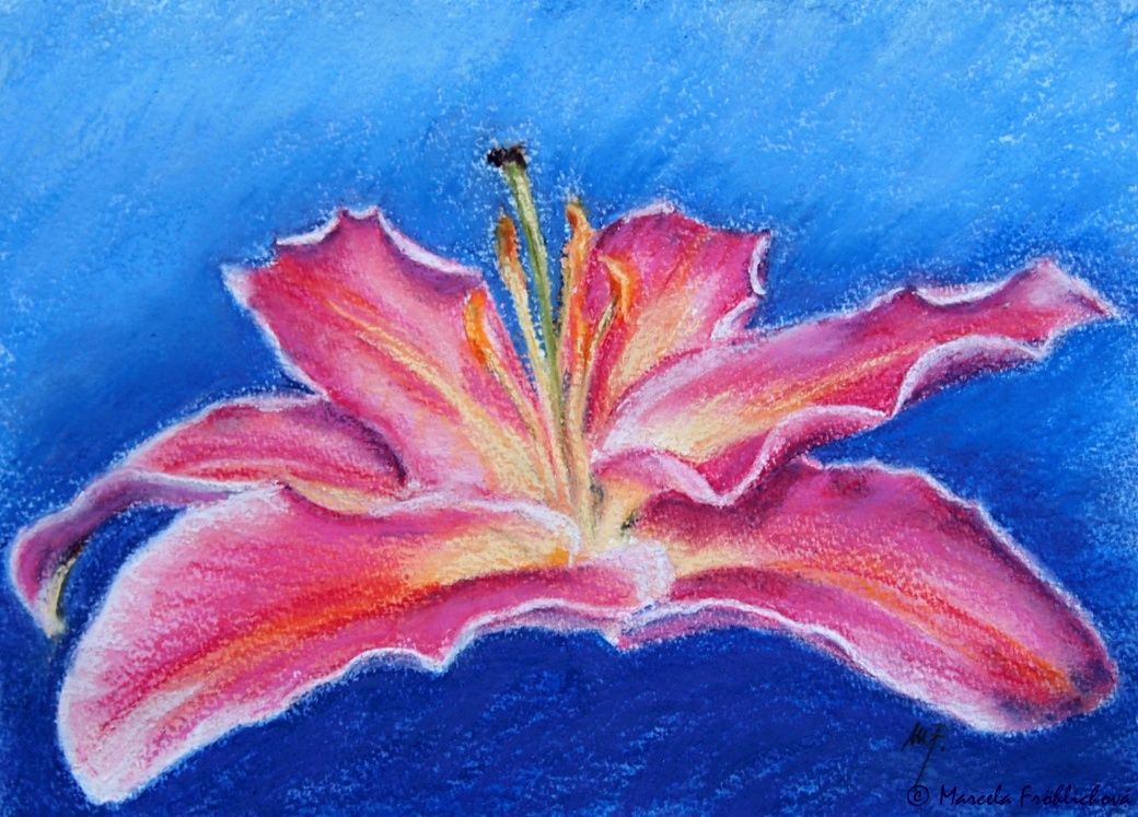 2012_12_100_Pink Lily in the night_pastel, watercolor